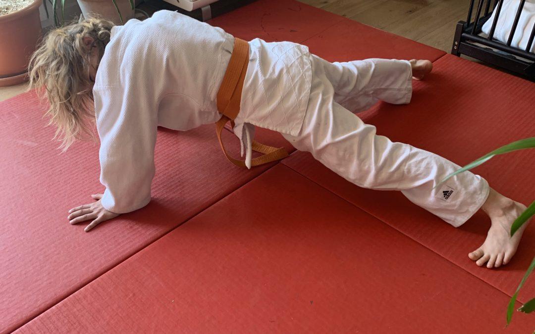 Quelques exercices de Judo à faire à la maison…… à vous de jouer les Judoka-tes des Eaux-Vives 💪🥋👍